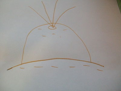 рисунок репка (5)
