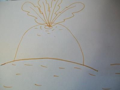 рисунок репка (8)