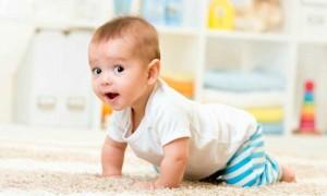 Что подарить ребенку с 6 месяцев до 1 года