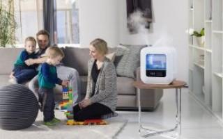 Увлажнители воздуха для квартиры: плюсы и минусы различных видов