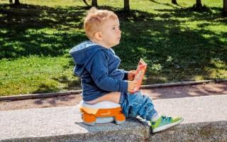 Выбираем самый удобный дорожный горшок для детей в путешествие: складной, надувной, стульчик-горшок