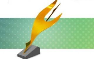 Дальневосточная интернет-премия Стерх-2015