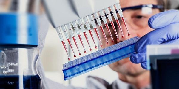 Расшифровка общего анализа крови